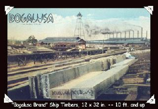'Bogalusa Brand' Ship Timbers, 12 x 32 in. -- 10 ft. and up